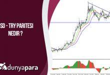 USD - TRY Paritesi Nedir ?